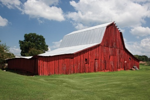 Old-barn-in-Alabama
