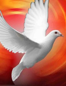 pentecost dove edt lo res