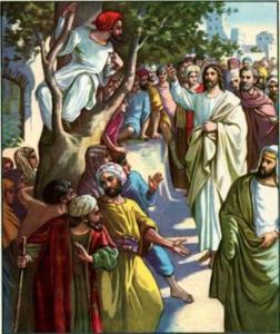 zacchaeus-bible-story-21262976